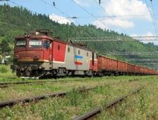 PDL a depus motiune pe tema privatizarii CFR Marfa - vor demisia Ramonei Manescu