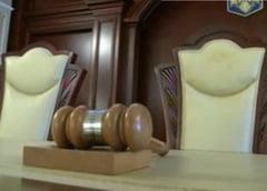 PDL a sesizat CCR pe legea referendumului - Vezi ce reclama