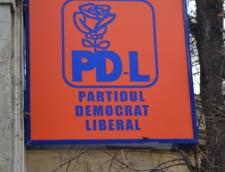 PDL a sesizat Curtea Constitutionala in privinta legii descentralizarii
