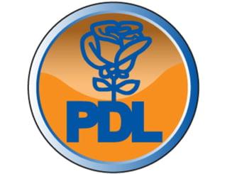 PDL ar putea trece pe verde si la Bucuresti. Portocaliul provoaca alergii