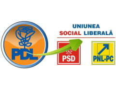 PDL pierde parlamentari pe banda rulanta - printre ei, vicele Senatului