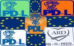 PDL se recladeste cu chirpici din lut european (Opinii)