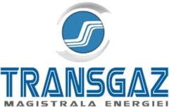 PMP cere comisie de ancheta pentru Transgaz: Mai avem resurse pentru 10 ani. Cum cedam gazul romanesc din Marea Neagra?
