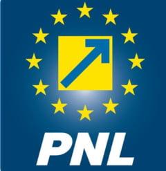 PNL: Dragnea recidiveaza. PSD cocheteaza cu infractiuni legate de referendum