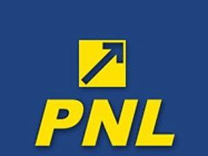 PNL Hunedoara isi contesta in instanta propriile liste electorale