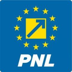 PNL a depus pentru a treia oara motiunea simpla pe Energie