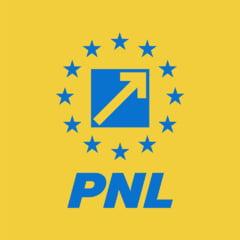 PNL acuza USR ca la Sectorul 1 a votat alaturi de PSD pentru tunuri la bugetul local