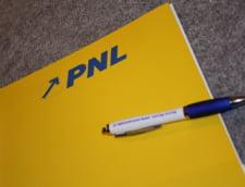 PNL cauta candidatul castigator pentru Primaria Capitalei - cand il vor anunta si cine e in cursa