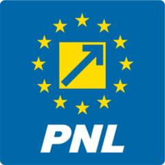 PNL cere excluderea lui Badalau din partid: Pumnul a devenit pentru PSD singurul argument!