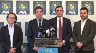 PNL cere in instanta dizolvarea companiilor infiintate ilegal de Firea: Administratia Bucurestiului a fost preluata efectiv in forta prin acest clan