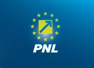 PNL se pregateste de alegeri interne: Cine aspira la functia de presedinte al partidului