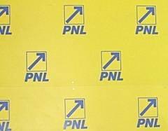 PNL si PC au validat listele de ministri