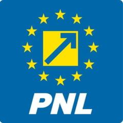 PNL si PSD scad, dar partidul lui Ponta a ajuns la 11% - barometru Europa FM