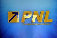 PNL va avea sapte prim-vicepresedinti asimilati in structura de conducere cu PDL