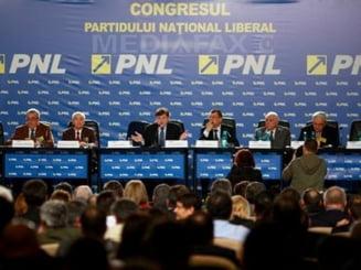 PNL va fi condus de o structura gigant - Lista lui Antonescu, votata