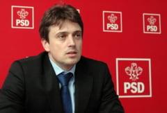PSD, replica la atacul Elenei Udrea: Candidatura la presedintie nu este un hobby