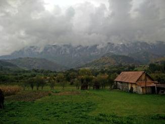 PSD propune infiintarea Consiliului National al Muntelui: Scutiri de impozite pentru agricultori