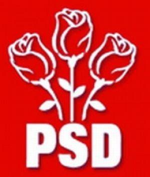 PSD si-a modificat statutul: Presedintele va fi ales de toti membrii de partid