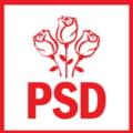 """PSD sustine ca aproape toate organizatiile s-au dezis """"de lovitura de stat"""". Si un parlamentar din Timis va vota motiunea"""