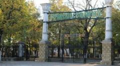 Padurea Crang va intra in proprietatea municipalitatii. Primarul Constantin Toma a inceput demersurile pentru castigarea celor zece hectare de padure