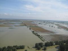 Paguba pentru fermieri de la prea multa ploaie: Mii de hectare de teren agricol, calamitate de inundatii