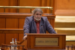 Pambuccian: Cine crede ca ministerele sunt conduse de ministri e naiv