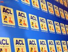 Panou ACL