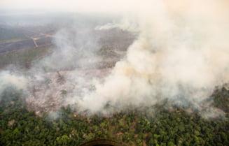 Papa Francisc, mesaj despre incendiile din padurea din Amazon