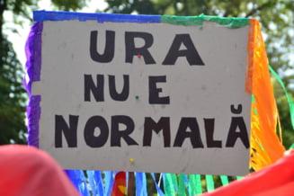 Homosexualii constitutie