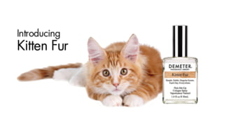Parfumul cu miros de blana de pisica