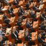 Parlamentarii banateni isi preiau rolurile pentru noua sesiune parlamentara! Mocioalca, marele castigator!