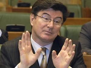 Parlamentarii nu au timp sa voteze Guvernul lui Negoita saptamana asta