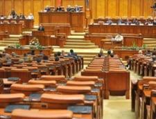 Parlamentarii pot taia frunze la caini si fara sa incalce Constitutia (Opinii)