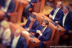Parlamentul Romaniei a adoptat in unanimitate o Declaratie referitoare la Legea Educatiei din Ucraina