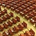 Parlamentul a fost abandonat de senatori si deputati. Unii isi fac campanie, altii isi cauta de lucru, leafa merge inainte