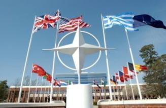 Participantii la AP NATO, tratati regeste, la Senat, cu produse vegetariene, rata si peste