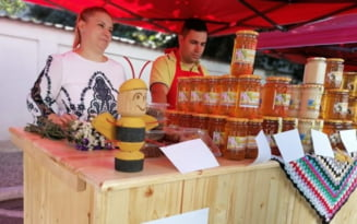"Pasiune devenita o afacere profitabila. Tanar apicultor: ""In loc de zahar folosesc miere. E mai sanatoasa"""