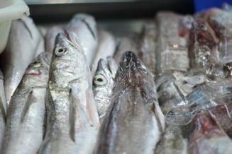 Patru braconieri, prinsi dupa ce au pescuit 88 de kilograme de peste din raul Olt. Pestii, inca vii, au fost aruncati inapoi in apa