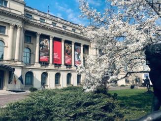 Patru muzee din Bucuresti se redeschid miercuri: Ce reguli trebuie respectate