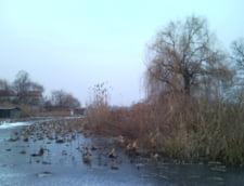 Patru persoane au cazut in Lacul Snagov, dupa ce au vrut sa-l traverseze pe gheata