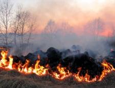 Pe cine obliga Daea sa-si puna culturile pe foc pentru a impiedica raspandirea pestei