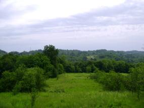 Peisaj colinar
