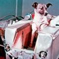 Pensia lui Prunariu, cosmonautii lui Geoana si PD-L fara flota - De la cititori