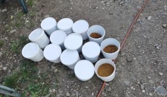 Perchezitii in Bucuresti si sase judete, printre care si Calarasi, la persoane banuite de producere si comercializare ilegala de tutun