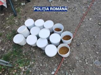 Perchezitii in Prahova la domiciliile mai multor persoane banuite ca ar fi produs si comercializat in mod ilegal tutun de fumat. VIDEO