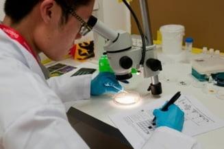 Performanta extraordinara pentru elevii romani: Medalii la Olimpiada Internationala de Biologie