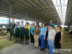 Performante la ferma de vaci Garbova a DN Agrar - 40.000 de litri de lapte pe zi!