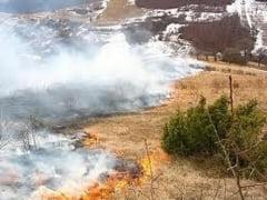 Peste 100 de hectare de teren mistuite de flacari in ALBA. Pompierii reamintesc regulile pentru arderea miristilor si sanctiuni