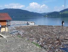 Peste 100 de tone de gunoaie au fost adunate de pe lacul Bicaz