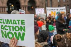 """Peste 11.000 de oameni de stiinta vorbesc despre """"o urgenta climatica"""": Ar putea aduce """"suferinte nespuse"""""""